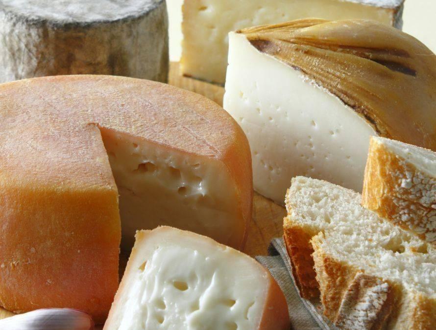 PLATEA. Viviendo el queso con intensidad