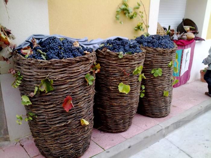 D.O.ARLANZA. Ruta de vinos con denominación propia