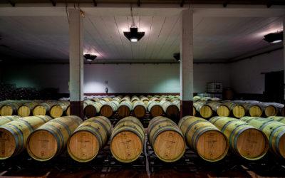 CASTELO DE MEDINA. Disfrutando de grandes joyas del vino